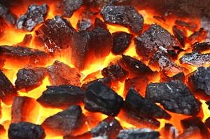 vor allem zum Grillen eignet sich Holzkohle für Feuerschalen